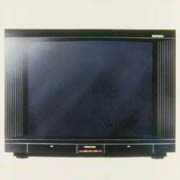 立體聲色監視/電視機-普騰電子工業股份有限公司