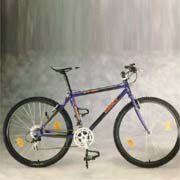 碳纖維自行車 CADEX / 巨大機械工業(股)公司