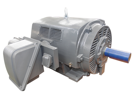 High efficiency energy saving motor of medium voltage / TECO ELECTRIC & MACHINERY CO., LTD.