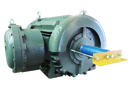 NEMA Premium Efficiency Explosion-proof