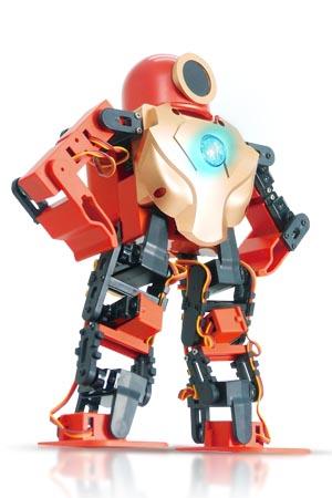 智能機器人 / 雷虎科技股份有限公司