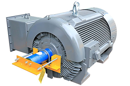 NEMA Premium Crusher Duty smart Motor / TECO ELECTRIC & MACHINERY CO., LTD.