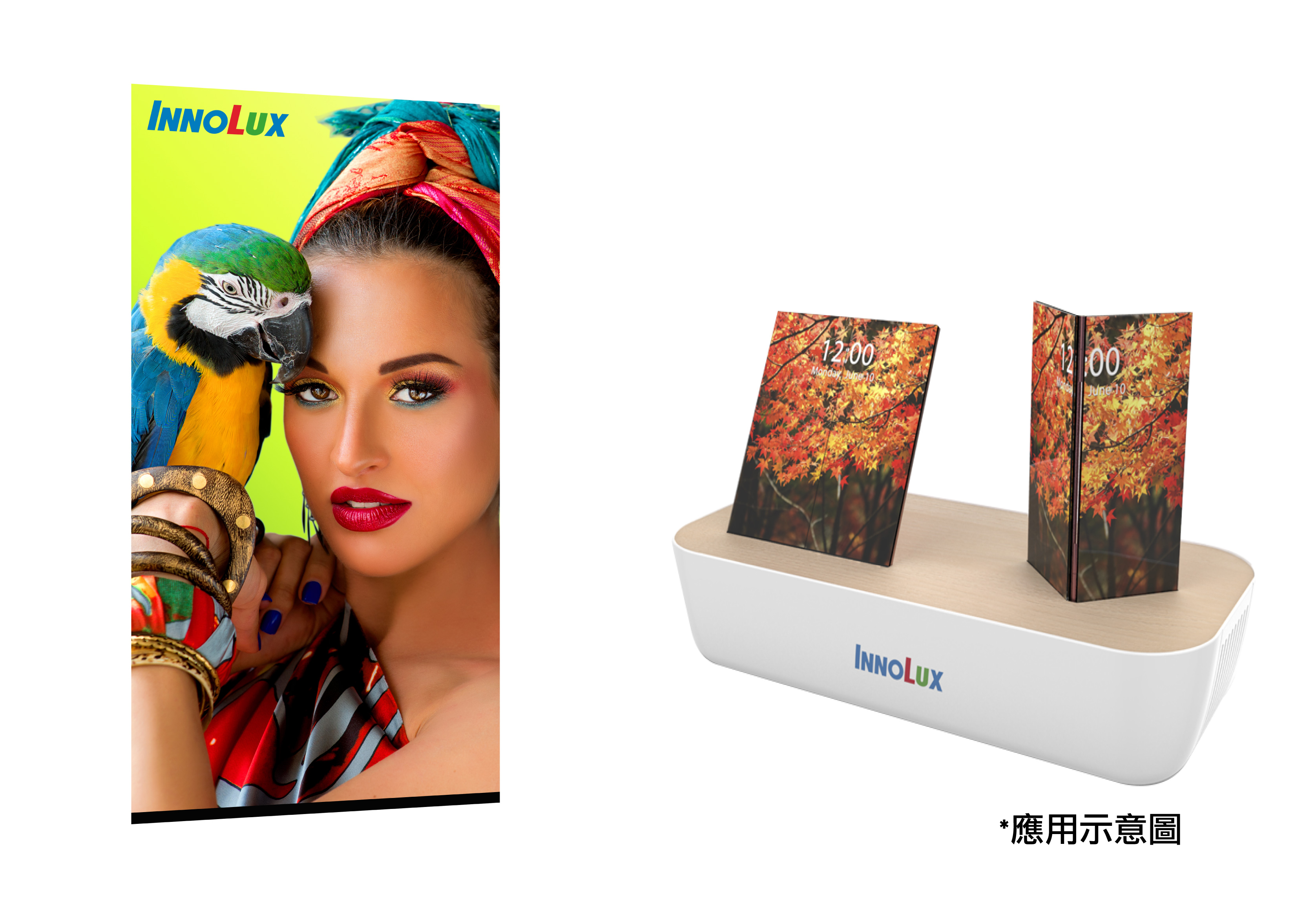 """5.99"""" Full Screen Display with Ultra Narrow Down Border-ODTG Technology and Applications"""