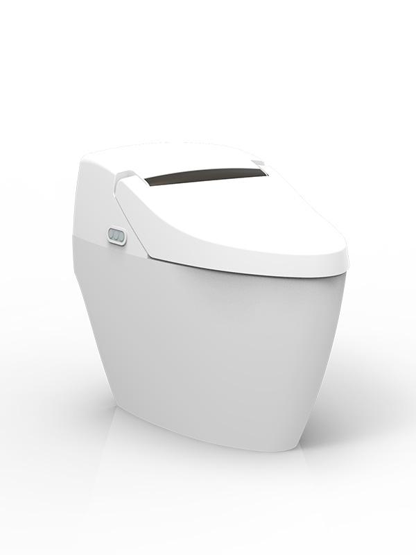 Intelligent Super Toilet
