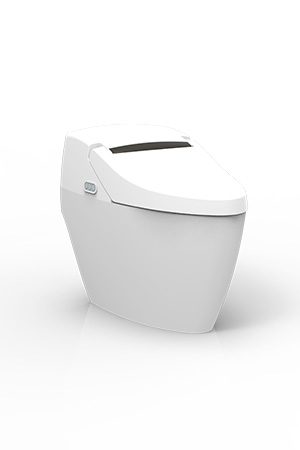 Intelligent Super Toilet / HOCHENG CORPORATION